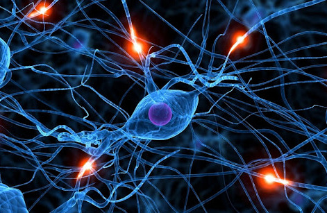 Complessità e reti neurali