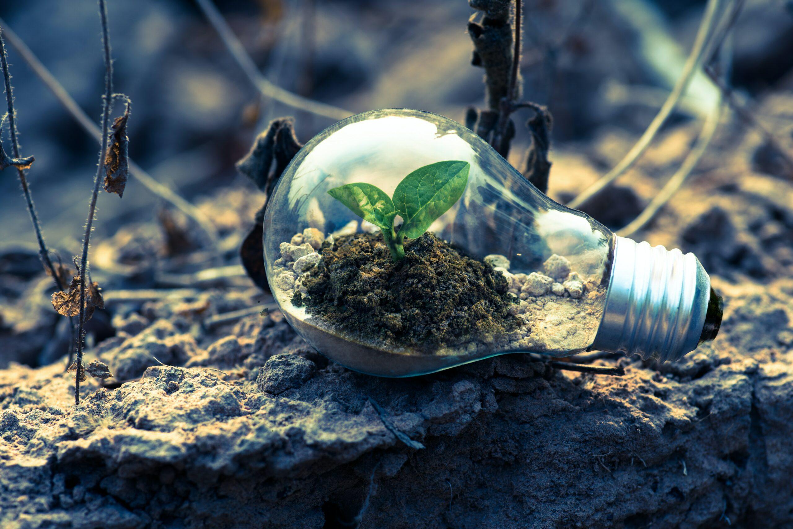 ecosostenibile
